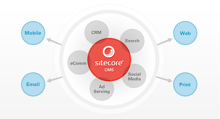 Baby steps to soa step five the move to a cms agile and alm sitecore cms architecture altavistaventures Gallery