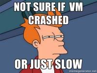 slow-vm