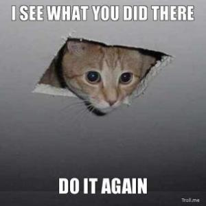 i-see-what-you-did-there-do-it-again-cat