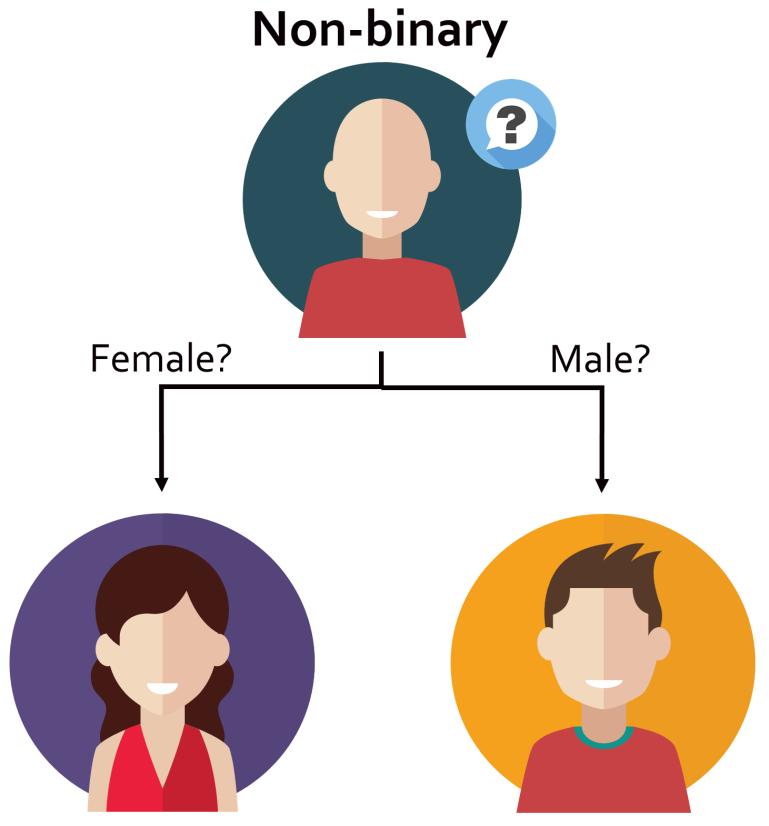 NonBinaryInBinaryModel