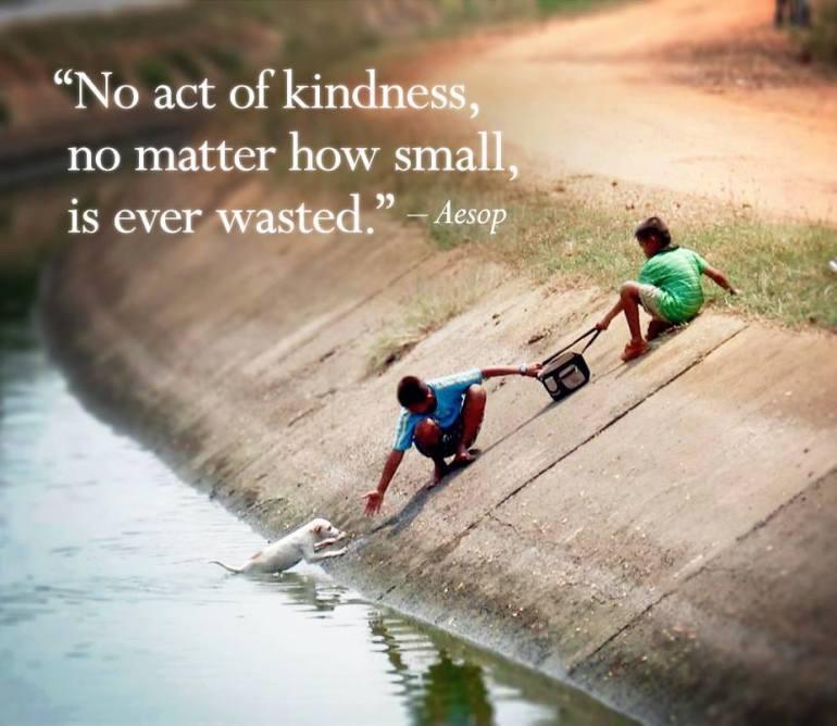 aesop_kindness